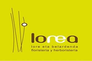 Lorea D
